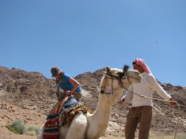 Mounting-a-camel-01
