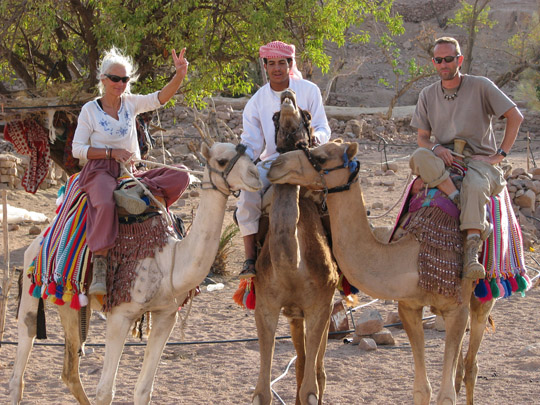 CAMEL IN THE BIBLE - King James Bible