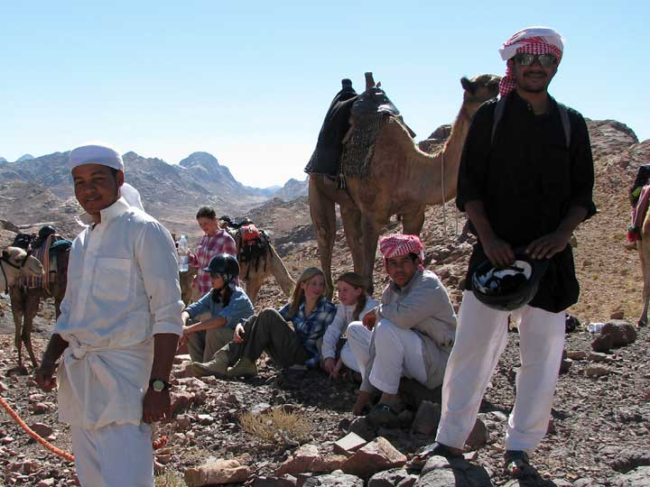 11-Camel safari Sinai Egypt
