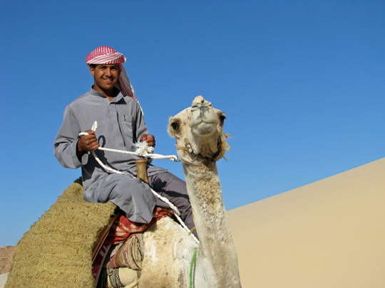 Camel riding safari Sinai Egypt