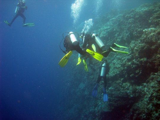 Wilderness Ventures Egypt dive courses