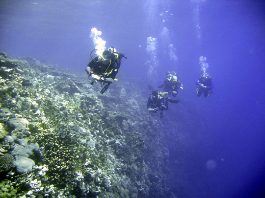 Wilderness Ventures Egypt Nesima diving